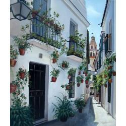 La calle de las flores de Córdoba