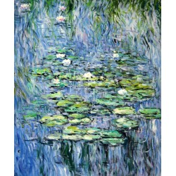 Nenúfares de Monet (5)