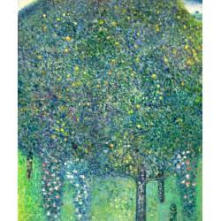 Rosas bajo los árboles de Klimt